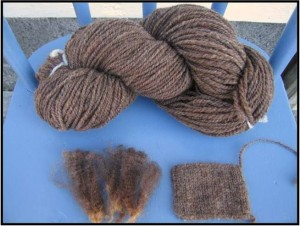 Fleece, Skein and Swatch